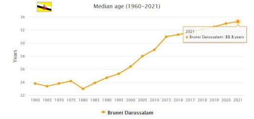 Brunei Median Age