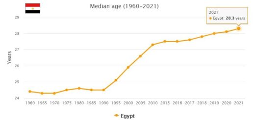 Egypt Median Age