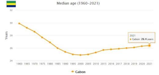 Gabon Median Age