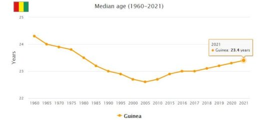 Guinea Median Age