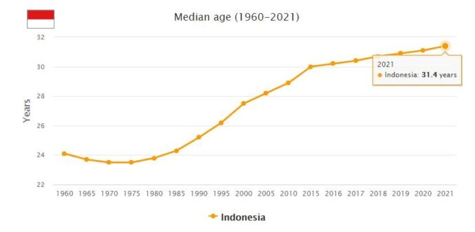 Indonesia Median Age