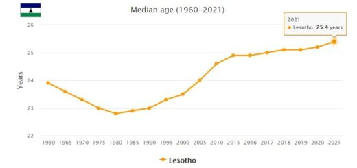 Lesotho Median Age