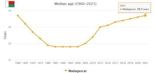 Madagascar Median Age