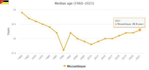 Mozambique Median Age