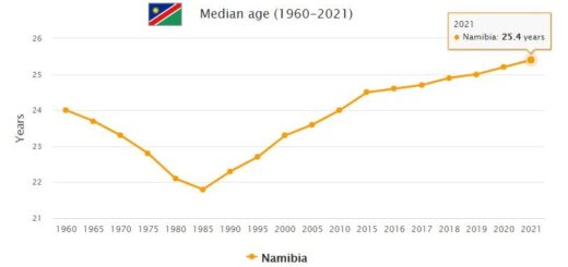 Namibia Median Age