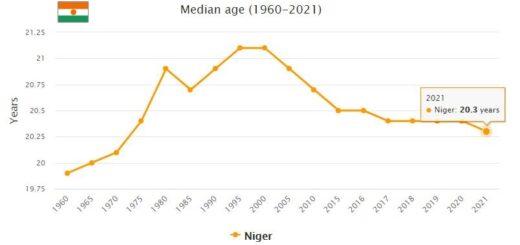 Niger Median Age