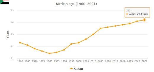 Sudan Median Age